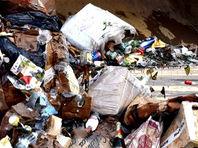 В Химках за 10 минут раздавили 5 тысяч бутылок с алкоголем