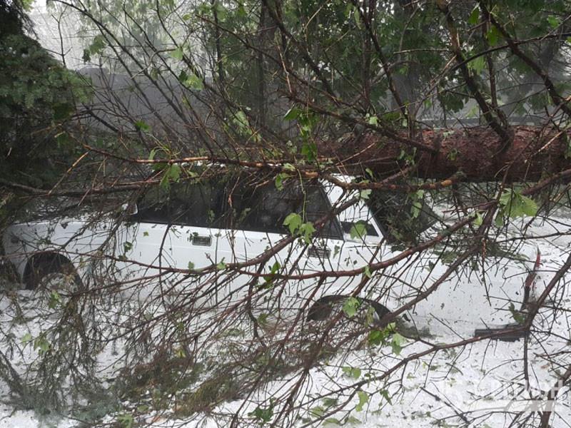 МЧС подводит итоги разгула стихии в Северной Осетии