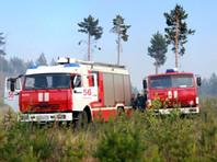 Всех детей эвакуировали из лагеря в Бурятии, где загорелся лес