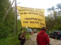 """Активисты """"Гринпис"""" провели пикет у полигона отходов в Ленинградской области, использовав фразу Медведева"""