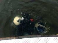 В реке Алдан обнаружены тела пропавших главы района Якутии и его жены