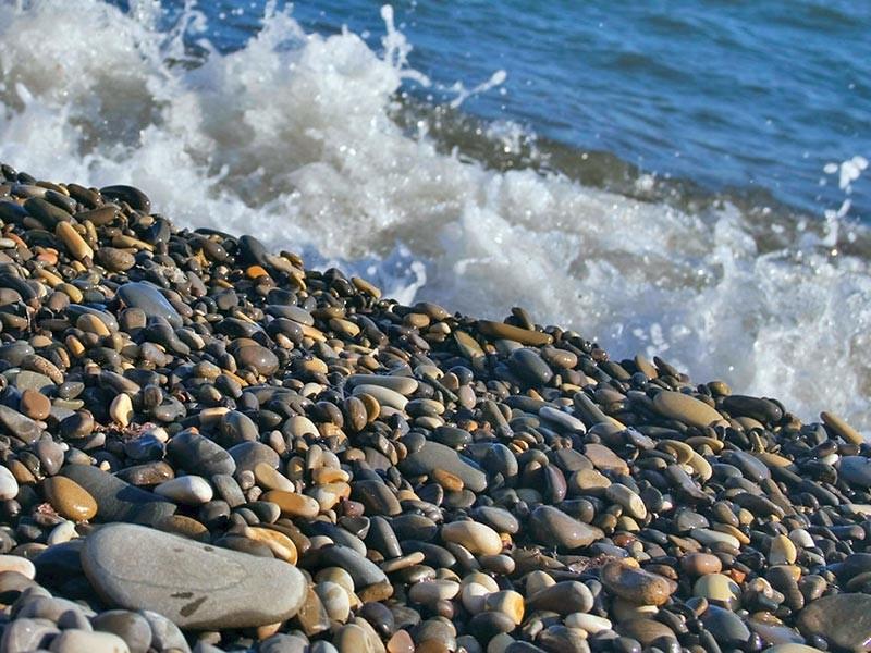 Мэрия Сочи отменила запрет на ночные купания на муниципальных пляжах, не дожидаясь пока ей пришлют петицию с соответствующим требованием, под которой сегодня начали собирать подписи в интернете