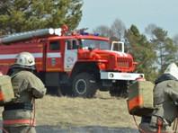Два сотрудника лесоохранной службы пропали при тушении пожаров в Красноярском крае