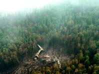 СМИ: Разбившийся Ил-76 зацепился крылом за верхушки деревьев
