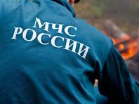 МЧС в Подмосковье переведено в режим чрезвычайной ситуации из-за высокой пожарной опасности