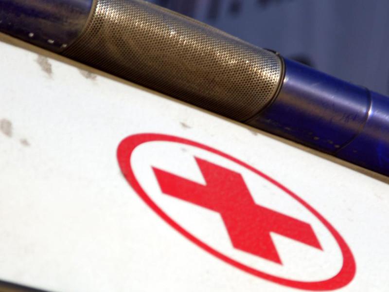 На Алтае госпитализирован ребенок с бубонной чумой, которую он мог подхватить от сурков