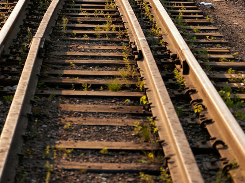 Грузовой поезд сбил насмерть двоих девушек в Подмосковье