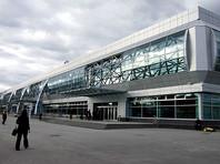 Лидера новосибирского отделения партии ПАРНАС задержали в аэропорту Толмачево