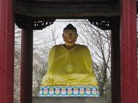 Осквернившего статую Будды дагестанского спортсмена приговорили к двум годам условно