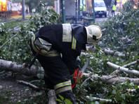 В Омске ликвидируют последствия мощного урагана, накрывшего город накануне вечером