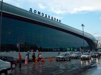 В аэропорту Домодедово задержали негражданку Латвии за отсутствие визы