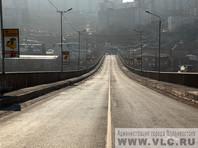 Во Владивостоке на мосту, который 40 лет грозит рухнуть, вырос подсолнух (ФОТО)