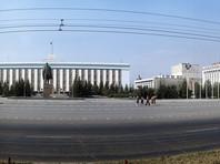 """""""За Барсика не голосует только мышь"""": выигравший """"народные выборы"""" мэра Барнаула кот создает свою партию"""