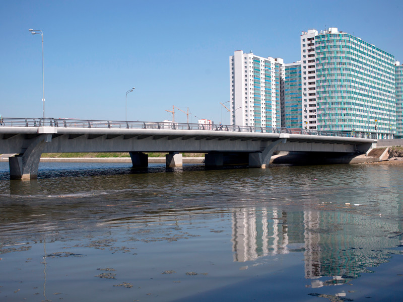 Горизбирком Санкт-Петербурга во второй раз отказал в проведении референдума по мосту Кадырова