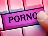 Роскомнадзор на основе решений суда заблокировал доступ на территории РФ к двум крупнейшим англоязычным порносайтам PornHub.com и YouPorn.com