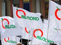 """""""Яблоко"""" сняло с выборов своего кандидата в Новосибирске из-за плагиата"""