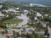 Экологи связали наводнение в Приморье с вырубкой защитных лесов