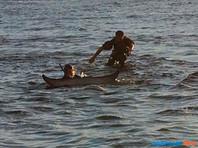 """На Сахалине экологи спасли малого полосатика, выбросившегося на отмель. Теперь кит, который подружился с главой фонда """"Зеленый Сахалин"""", отказывается покидать бухту в Татарском проливе"""
