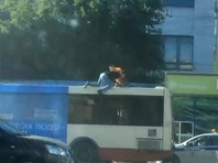 В Челябинске двое мужчин подрались на крыше автобуса (ВИДЕО)