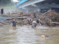 В Приморье готовятся к новому удару стихии: тайфун Lionrock поставил рекорд, медведи нападают на людей