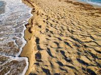 Ученые бьют тревогу: добыча песка уничтожает крымские пляжи