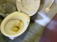 Роспотребнадзор в Новокузнецке защитил права школьников на уединение в туалете