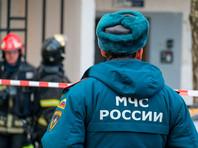 В Хабаровске спустя три года спасли замурованную между двух зданий собаку