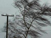 По данным регионального МЧС, в результате прохождения циклона в Курильском и Южно-Курильском районах были повреждены кровли крыши и фасады зданий на общей площади 290 кв. м