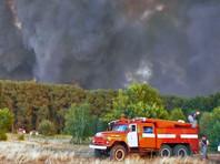 """""""Гринпис России"""" выяснил, что все крупные пожары в Иркутской области в 2016 году случились по вине человека"""