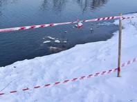 В Башкирии маршрутка с детьми упала в озеро и пробила лед, пострадали 6 человек
