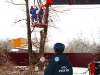 Десятки тысяч человек остались без света из-за снегопада в центральной России