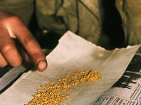 Житель Приамурья, нашедший в лесу банку с золотом, получил условный срок