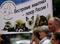 Участники всероссийской акции