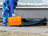 Дочь разбившегося в ДТП замглавы Заксобрания Петербурга погибла, выпав из окна