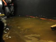 """Волгоградский бомж устроил бассейн в затопленном подвале и орал """"Карамба!"""" прибывшим полицейским"""
