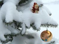Свердловский Роспотребнадзор запретил пускать детей антивакцинаторов на новогодние елки