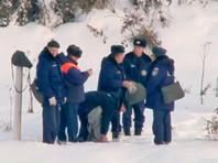 Власти Рузы обещают позаботиться о лебедях в замерзающей полынье