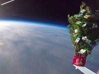 Сибиряки в миротворческих целях запустили в космос новогоднюю елочку (ВИДЕО)