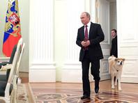 """Опоздания российского президента стали неотъемлемой частью его """"этикета"""""""