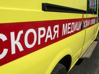 В Саратовской области автомобиль с сотрудниками Министерства соцразвития врезался в столб, погибли 3 человека