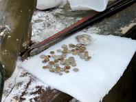 Из утроб знаменитых петербургских грифонов извлекли кучу монет и записок