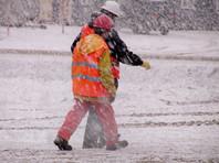 На Сахалине из-за снегопада отменили День снега