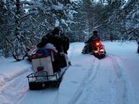 В Томской области спасли группу четвероклассников, заблудившихся в лесу во время урока физкультуры (ВИДЕО)
