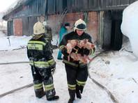 Томские пожарные вынесли 150 поросят из горящего свинарника