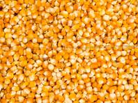 Семь тонн кукурузы вывалилось на трассу в Уссурийске, спровоцировав ДТП (ВИДЕО)