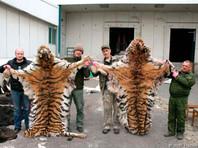 Приморский браконьер заплатит беспрецедентный штраф за убийство тигров, медведей, оленей и птиц