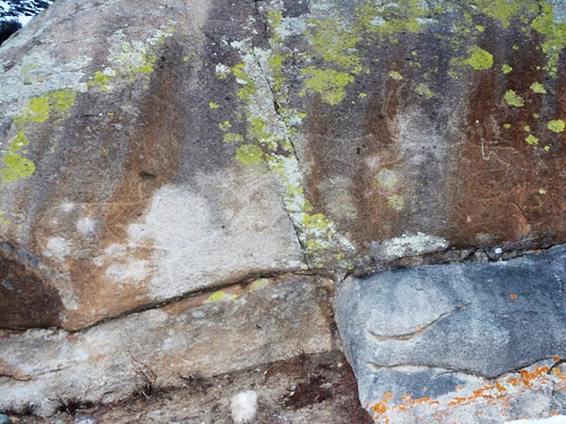 В Ондугайском районе найден самый крупный петроглиф Горного Алтая
