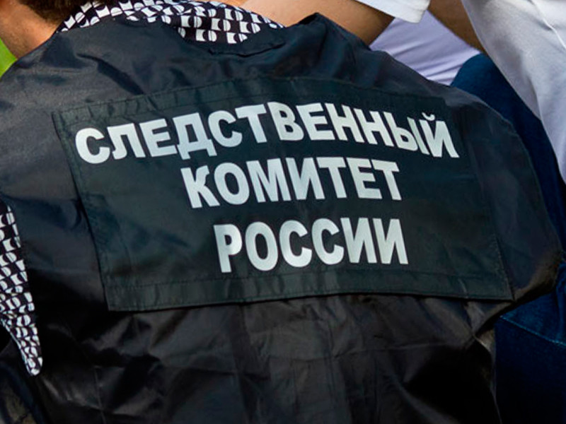 Следственный комитет прекратил уголовное дело в отношении дворников , собиравших листву во флаг России в Волгограде
