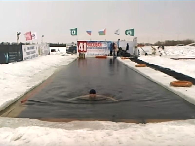 На озере Чемпионов в Тюмени моржи в минувшие выходные провели многочасовую непрерывную эстафету, за время которой проплыли свыше 70 км за 41 час