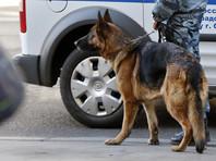 В Хабаровске эвакуировали все суды из-за ложного звонка о бомбе